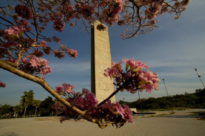 torre-do-relogio-usp